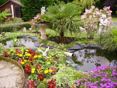 bassin de jardin fleuri